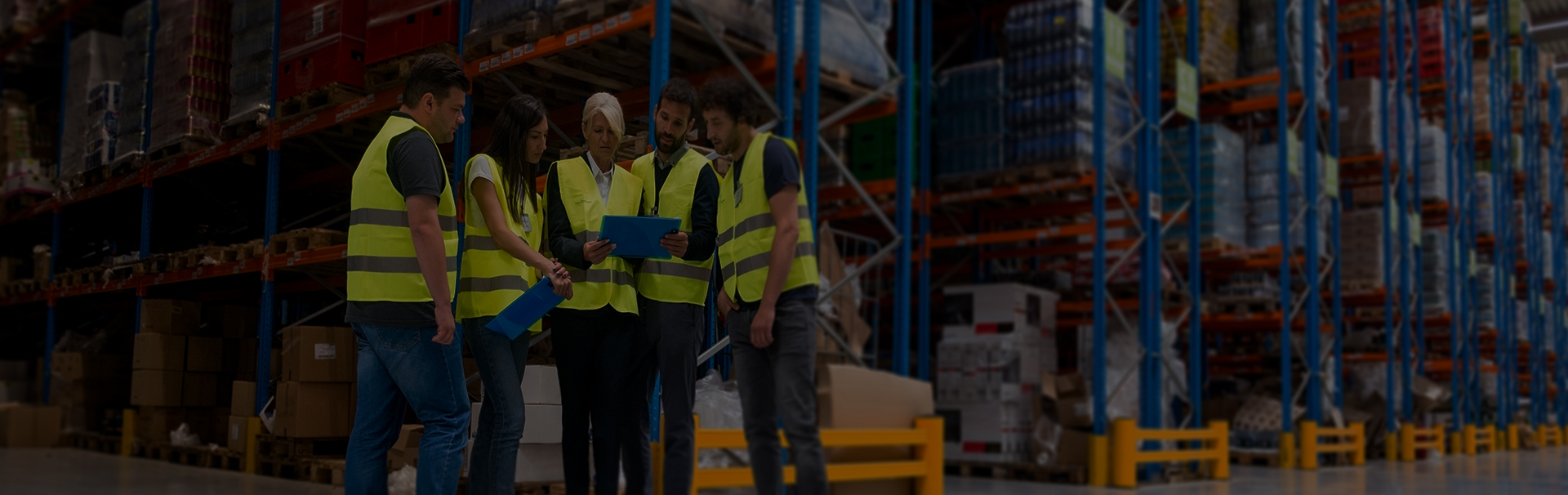 Softeon   Innovative Supply Chain Management Solutions